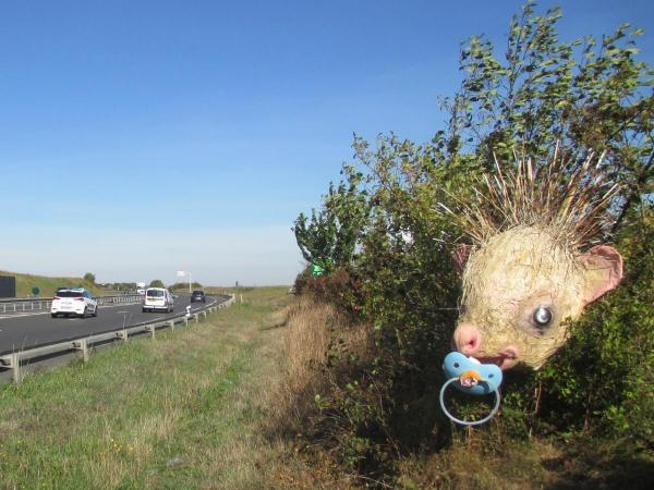 Street Art Pierre Marcel on roads, not on streets: Hedgehog heads