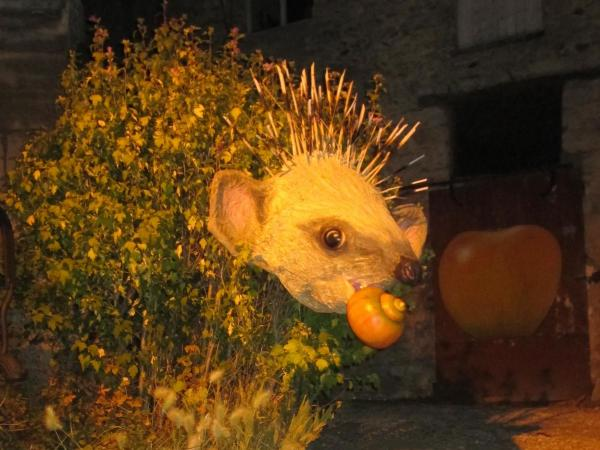 Hedgehogs love snails and apples in Saint-Clair-sur-Epte